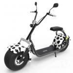 Transport Gratuit-RoBaRo Bicicleta electrica, 1000 W