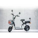 Scooter electric RKS ECOTECH, Motor 250W, 48V, 12Ah, Autonomie 30km, Fara permis