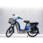 Bicicleta electrica RKS KM5-S UTIL, 25 km/h, 250W