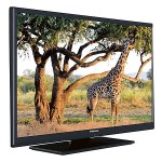 TELEVIZOR FINLUX 24F160, LED, HD READY, 61 CM